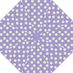 Daisy Dots Violet Hook Handle Umbrellas (large)