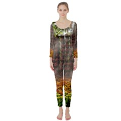 20180115 144003 Hdr Long Sleeve Catsuit