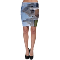 20180115 125817 Hdr Bodycon Skirt