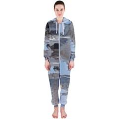 20180115 125817 Hdr Hooded Jumpsuit (ladies)