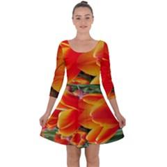 20180115 144714 Hdr Quarter Sleeve Skater Dress