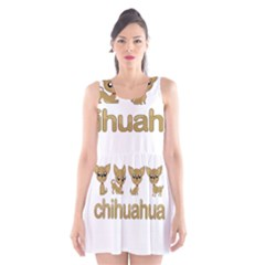 Chihuahua Scoop Neck Skater Dress