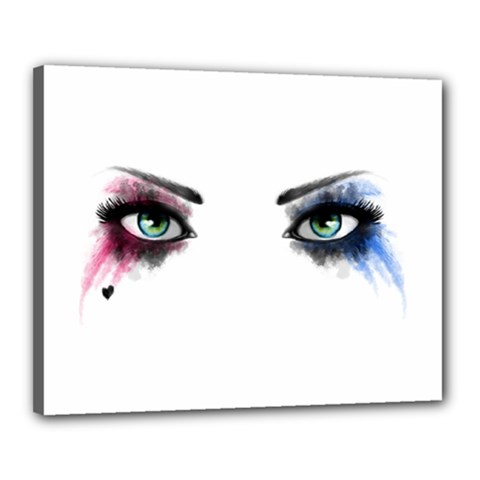 Look Of Madness Canvas 20  X 16