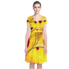 Abstract Water Oil Macro Short Sleeve Front Wrap Dress