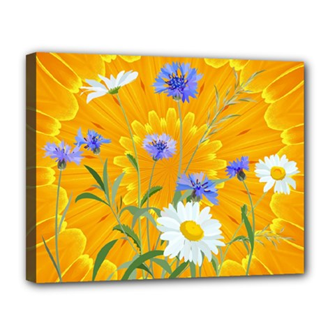 Flowers Daisy Floral Yellow Blue Canvas 14  X 11