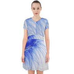Feather Blue Colored Adorable In Chiffon Dress