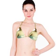 Lady 781311 1920 Bikini Top