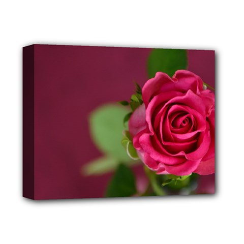 Rose 693152 1920 Deluxe Canvas 14  X 11