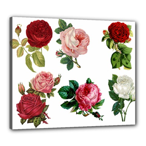 Roses 1770165 1920 Canvas 24  X 20