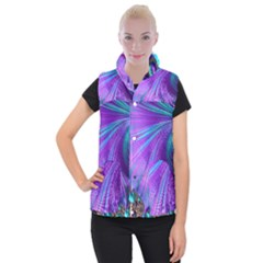 Abstract Fractal Fractal Structures Women s Button Up Puffer Vest