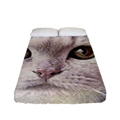 Cat Pet Cute Art Abstract Vintage Fitted Sheet (full/ Double Size)