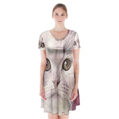 Cat Pet Cute Art Abstract Vintage Short Sleeve V Neck Flare Dress