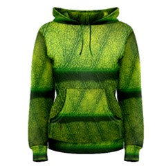 Leaf Nature Green The Leaves Women s Pullover Hoodie