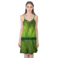 Leaf Nature Green The Leaves Camis Nightgown