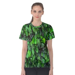 The Leaves Plants Hwalyeob Nature Women s Cotton Tee