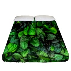 The Leaves Plants Hwalyeob Nature Fitted Sheet (queen Size)
