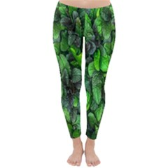 The Leaves Plants Hwalyeob Nature Classic Winter Leggings