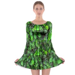 The Leaves Plants Hwalyeob Nature Long Sleeve Skater Dress