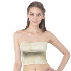 Background 1659622 1920 Tube Top