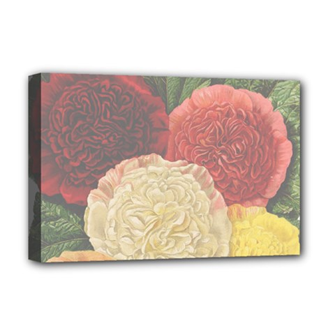 Flowers 1776434 1280 Deluxe Canvas 18  X 12