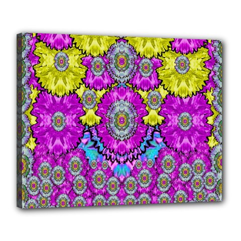 Fantasy Bloom In Spring Time Lively Colors Canvas 20  X 16