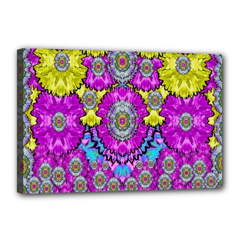 Fantasy Bloom In Spring Time Lively Colors Canvas 18  X 12