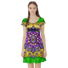 Sunshine In Mind The Season Is Decorative Fine Short Sleeve Skater Dress