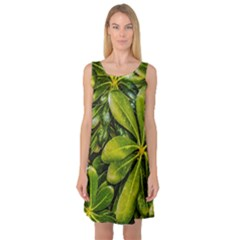 Top View Leaves Sleeveless Satin Nightdress
