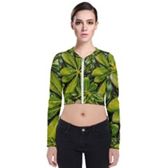 Top View Leaves Bomber Jacket