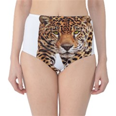 On?a Pintada  High Waist Bikini Bottoms