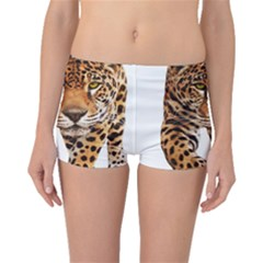 On?a Pintada  Boyleg Bikini Bottoms