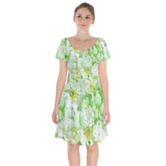 Light Floral Collage  Short Sleeve Bardot Dress