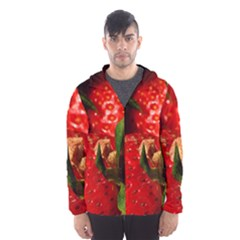 Red Strawberries Hooded Wind Breaker (men)