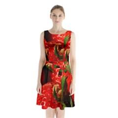 Red Strawberries Sleeveless Waist Tie Chiffon Dress
