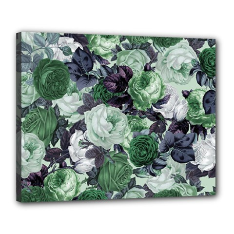 Rose Bushes Green Canvas 20  X 16
