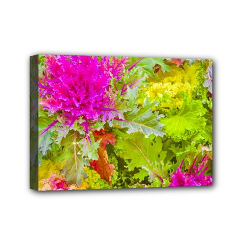 Colored Plants Photo Mini Canvas 7  X 5
