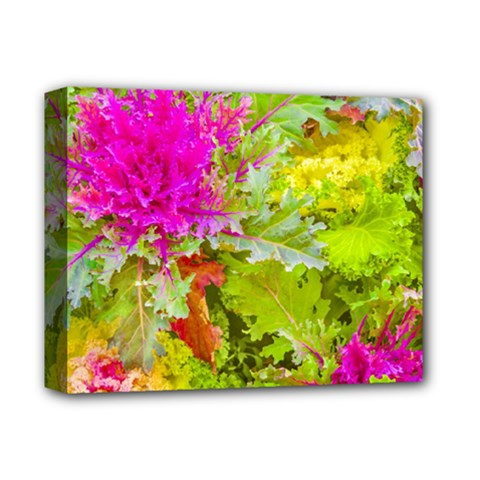 Colored Plants Photo Deluxe Canvas 14  X 11