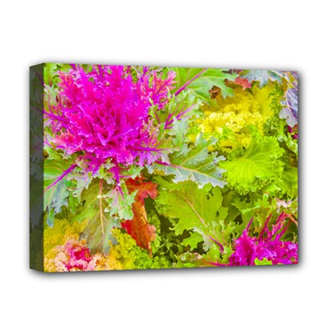 Colored Plants Photo Deluxe Canvas 16  X 12