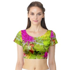 Colored Plants Photo Short Sleeve Crop Top
