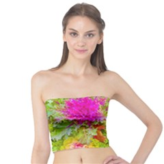 Colored Plants Photo Tube Top