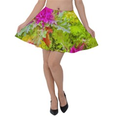 Colored Plants Photo Velvet Skater Skirt