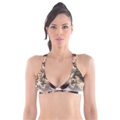 Vintage 1501558 1280 Plunge Bikini Top