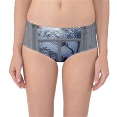 Winter 1660924 1920 Mid Waist Bikini Bottoms