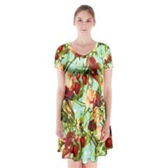 Fruit Blossom Short Sleeve V Neck Flare Dress