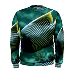 Angelfish 4 Men s Sweatshirt
