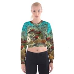 Coral Garden 1 Cropped Sweatshirt