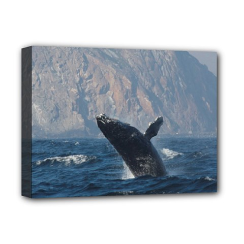 Humpback 1 Deluxe Canvas 16  X 12
