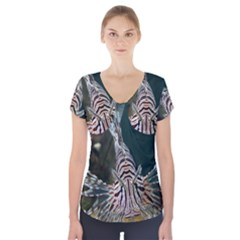 Lionfish 4 Short Sleeve Front Detail Top