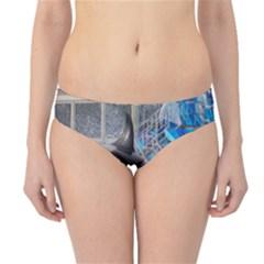 Orca 1 Hipster Bikini Bottoms