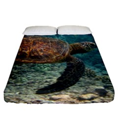 Sea Turtle 3 Fitted Sheet (queen Size)